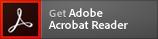 Icon: Acrobat Reader beziehen